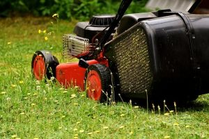 Health and Safety Tips for Ground Maintenance Workers