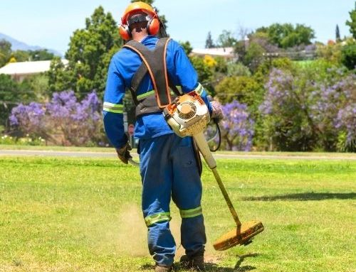 Everything You Need To Know About Horticultural Landscaping Health And Safety Requirements