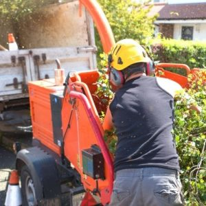 Horticultural Landscaping Health And Safety Requirements