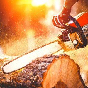 N602 Chainsaw training